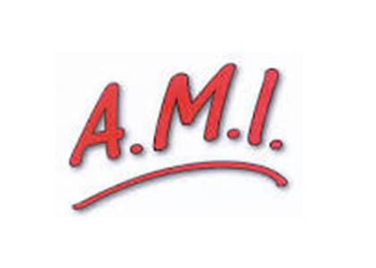 FACE Aude Les entreprises engagées A.M.I Aude